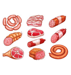 Sausage and meat sketch set for food design vector