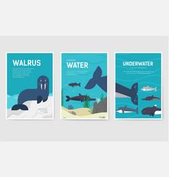 Set of sea mammals pattern concept art animal vector
