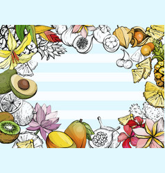 Summer background with fruit and flowers vector