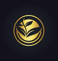seed plant organic gold logo vector image