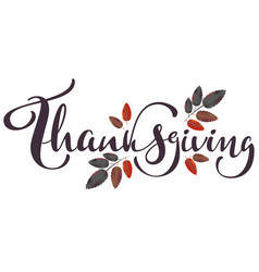 thanksgiving calligraphy text and autumn aspberry vector image