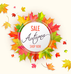 Autumn typographic sale vector