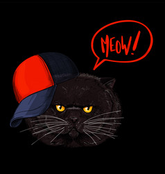 brown grumpy cat face red and black cap vector image