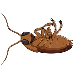 Cartoon dead cockroach vector