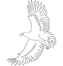 eagle line art 01 vector image