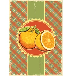 Orange fresh fruits vector image