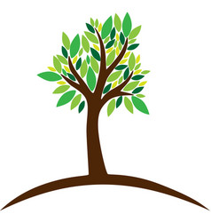 Tree with green leaves on white background vector