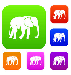 wild elephant set collection vector image