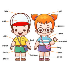 vocabulary clothing vector image vector image