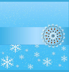 Winter background with floral vector