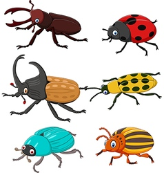 Cartoon funny beetle collection vector image vector image