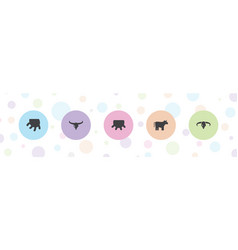 5 cattle icons vector image