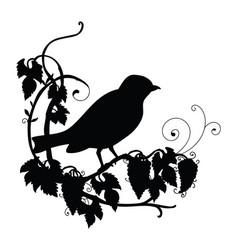 Black silhouette birdie and flower composition vector