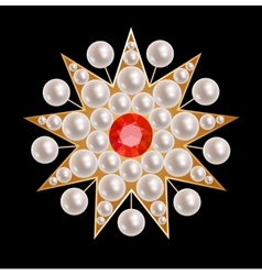 Brooch star vector