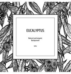 Hand drawn eucalyptus background herbal pattern vector