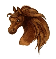 Horse mustang head sketch portrait vector