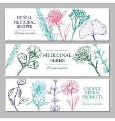 Medicinal Herbs Horizontal Banners vector image