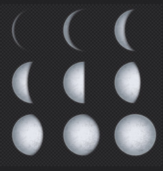 realistic moon phases lunar phase full luna and vector image