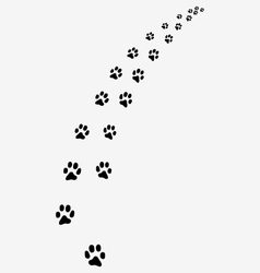 Trail of cats vector