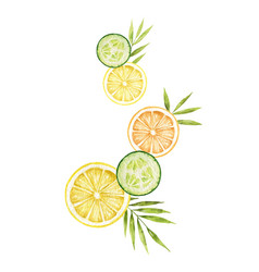 watercolor card with lemon cucumber slices vector image