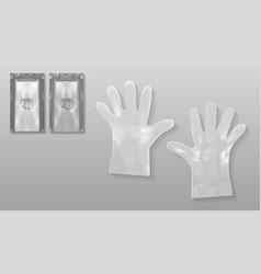 disposable transparent plastic gloves with packing vector image vector image