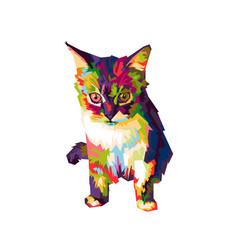 colorfull cat vector image