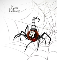 Halloween spider card vector