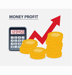 money profit concept vector image