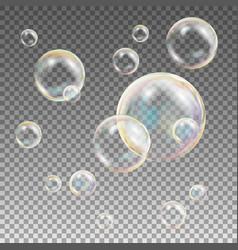 soap bubbles rainbow reflection soap vector image