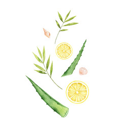 watercolor card with lemon slices aloe and vector image