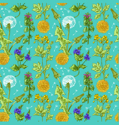 pattern with wildflowers vector image