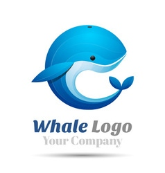Whale Volume Logo Colorful 3d Design Corporate vector image
