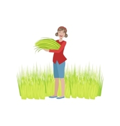 Woman collecting green crops vector