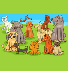 Cartoon purebred dogs and puppies characters group vector