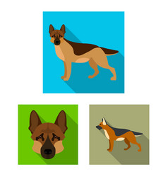 Design of and sheepdog icon set of a vector