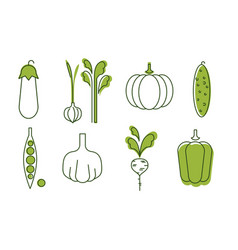 fresh vegetables icons set eggplant onion vector image