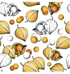 Seamless pattern with physalis berries vector