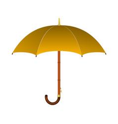 umbrella in orange design vector image