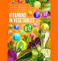 Vitamin food source in vegetables vector