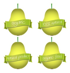 sweet pears with organic and natural banners eps10 vector image vector image