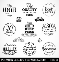 Premium Quality Badges and Labels in Vintage Style vector image