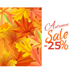 Autumn sale -25 off icon yellow foliage vector