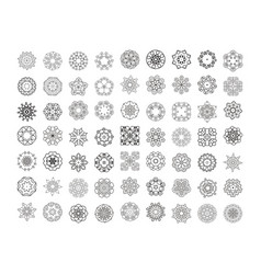 floral mandala pattern unusual flower shape vector image