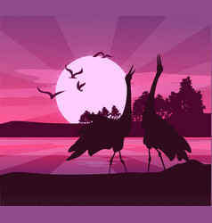 Silhouette of birds sunset vector