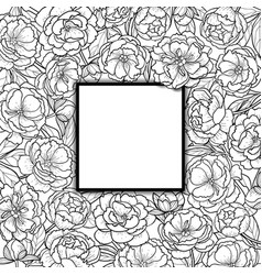 Squared frame with peonies vector