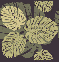 elegant seamless pattern with tropical monstera vector image