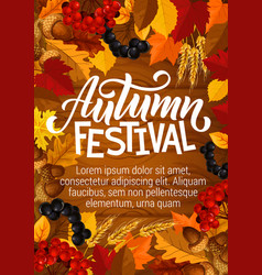 Autumn festival poster berries in foliage vector