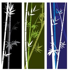 banner with bamboo branches vector image