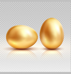 Golden eggs realistic for vector