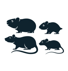 Rodents icons vector